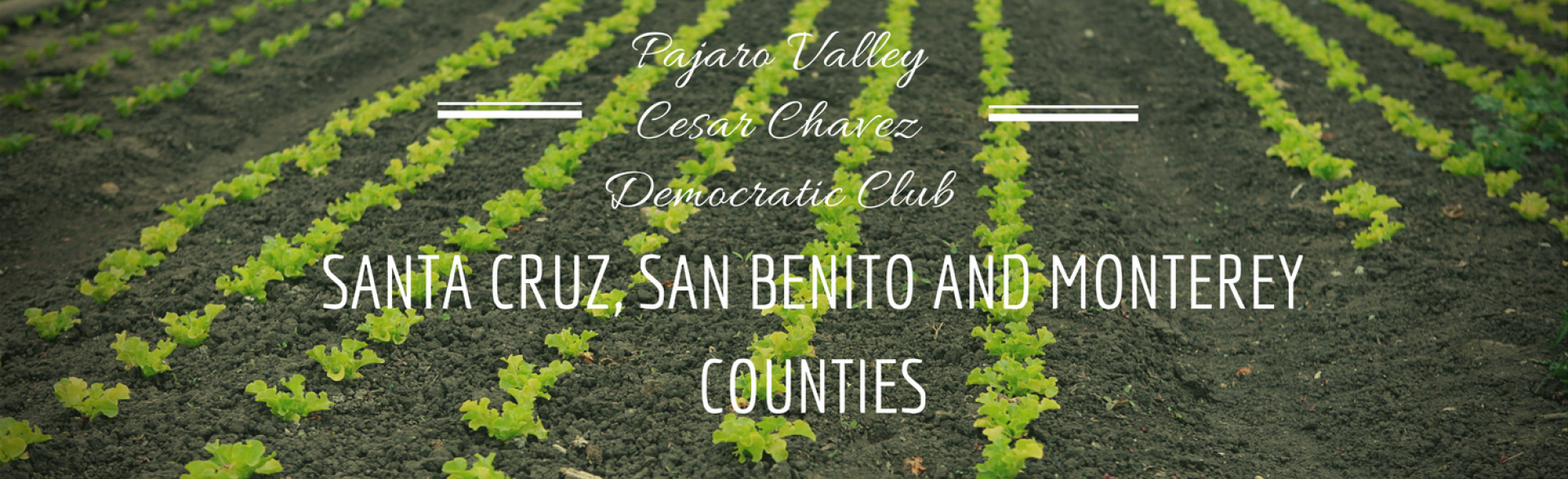 Pajaro Valley Cesar Chavez Democratic Club